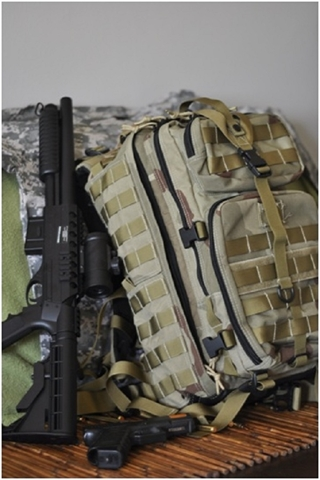 Picture for category Assault Bags